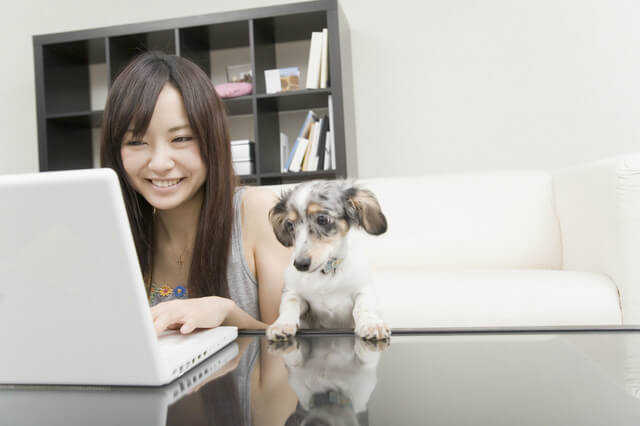【無料ブログ】どこがいい?最新!2017年でも使える人気のオススメ無料ブログ